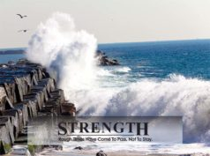 huxfit Motivational Strength Poster